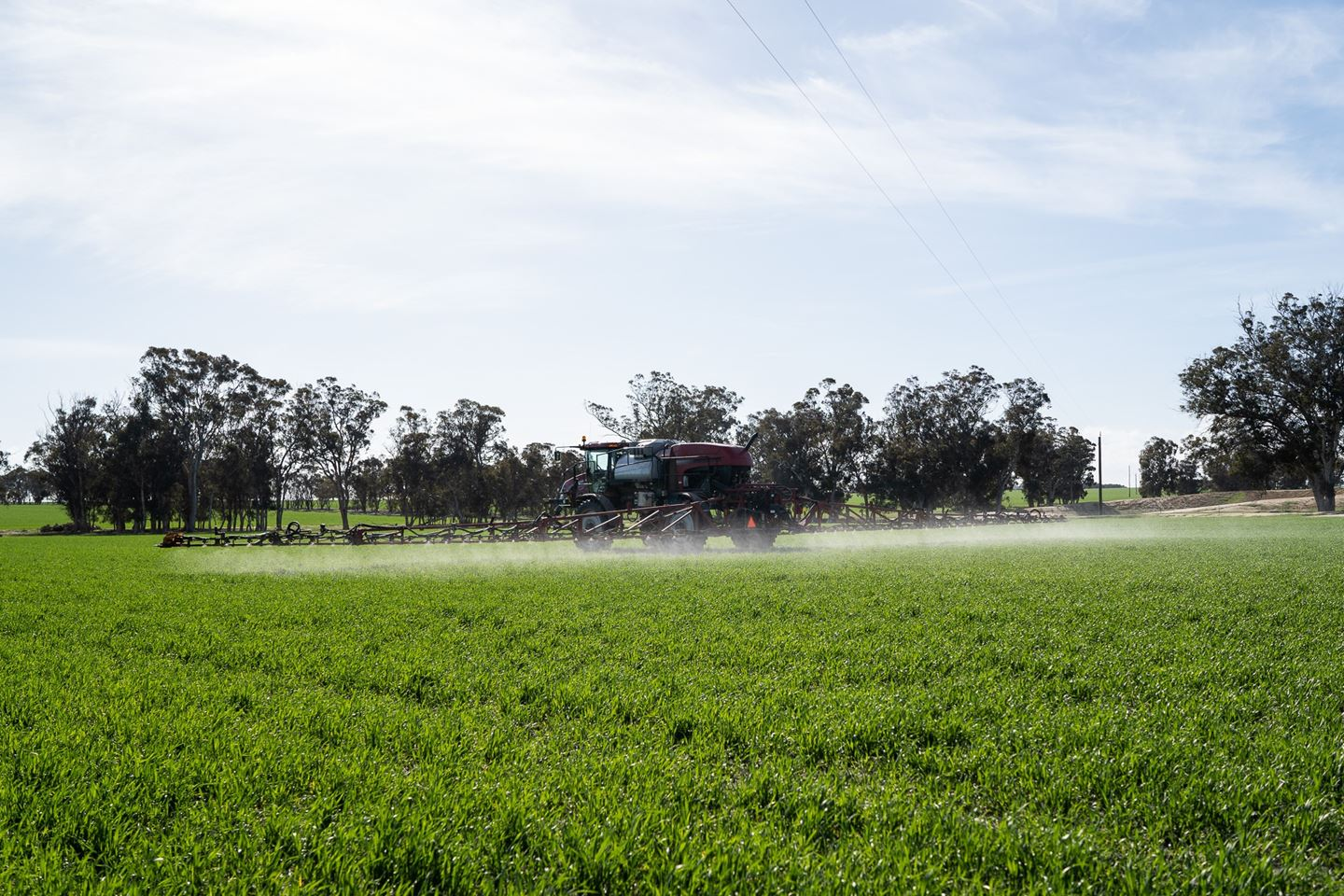 A red sprayer moving through a green paddock